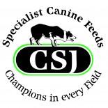 CSJ Logo